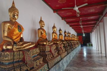 wat-pho-temple-buddha
