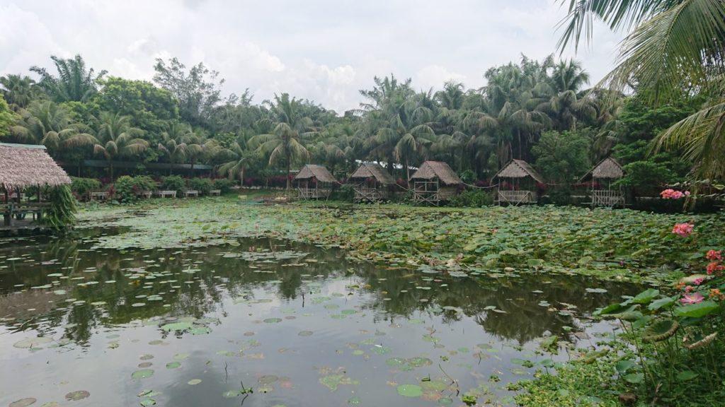 jong-crocodile-farm-oniontrip